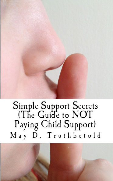 Parent of the Year Guide to NOT Paying Child Support, Actual Book